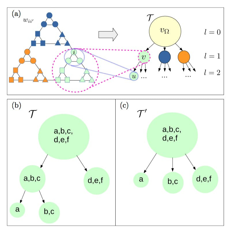 Hierarchical mutual information for the comparison of hierarchical community structures in complex networks.
