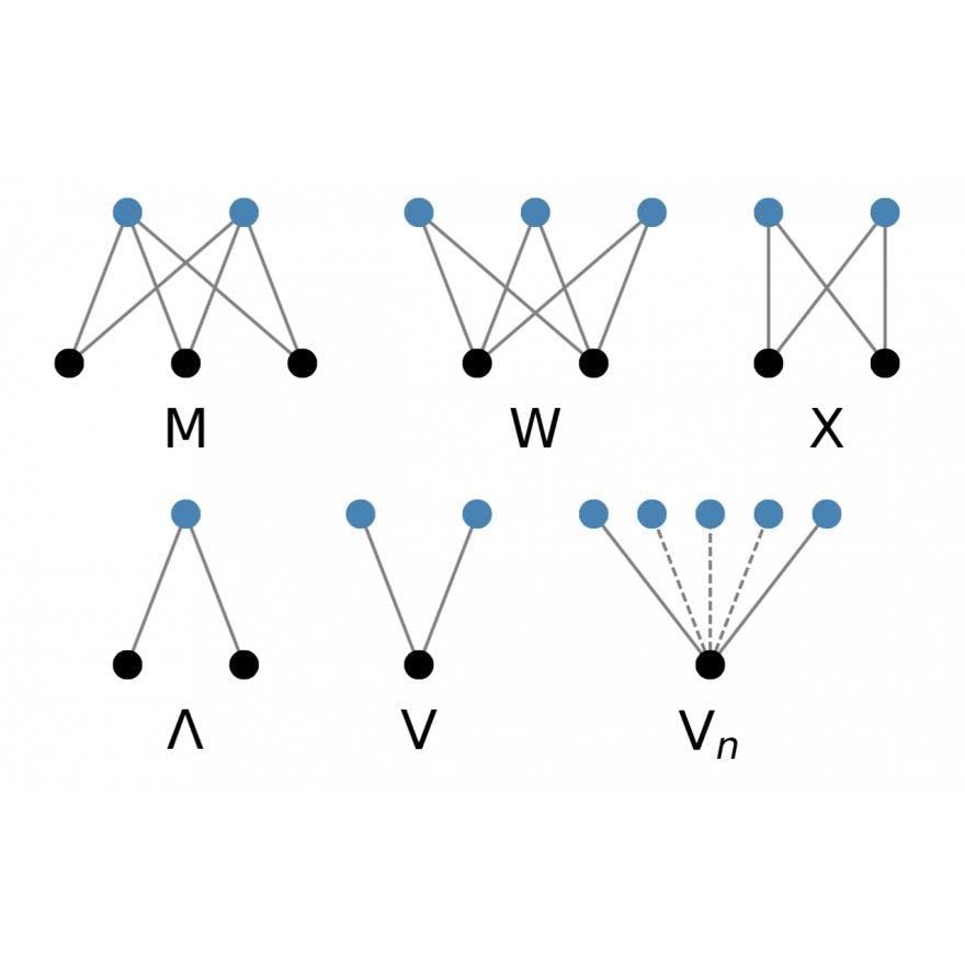 Illustration of several undirected bipartite motifs.