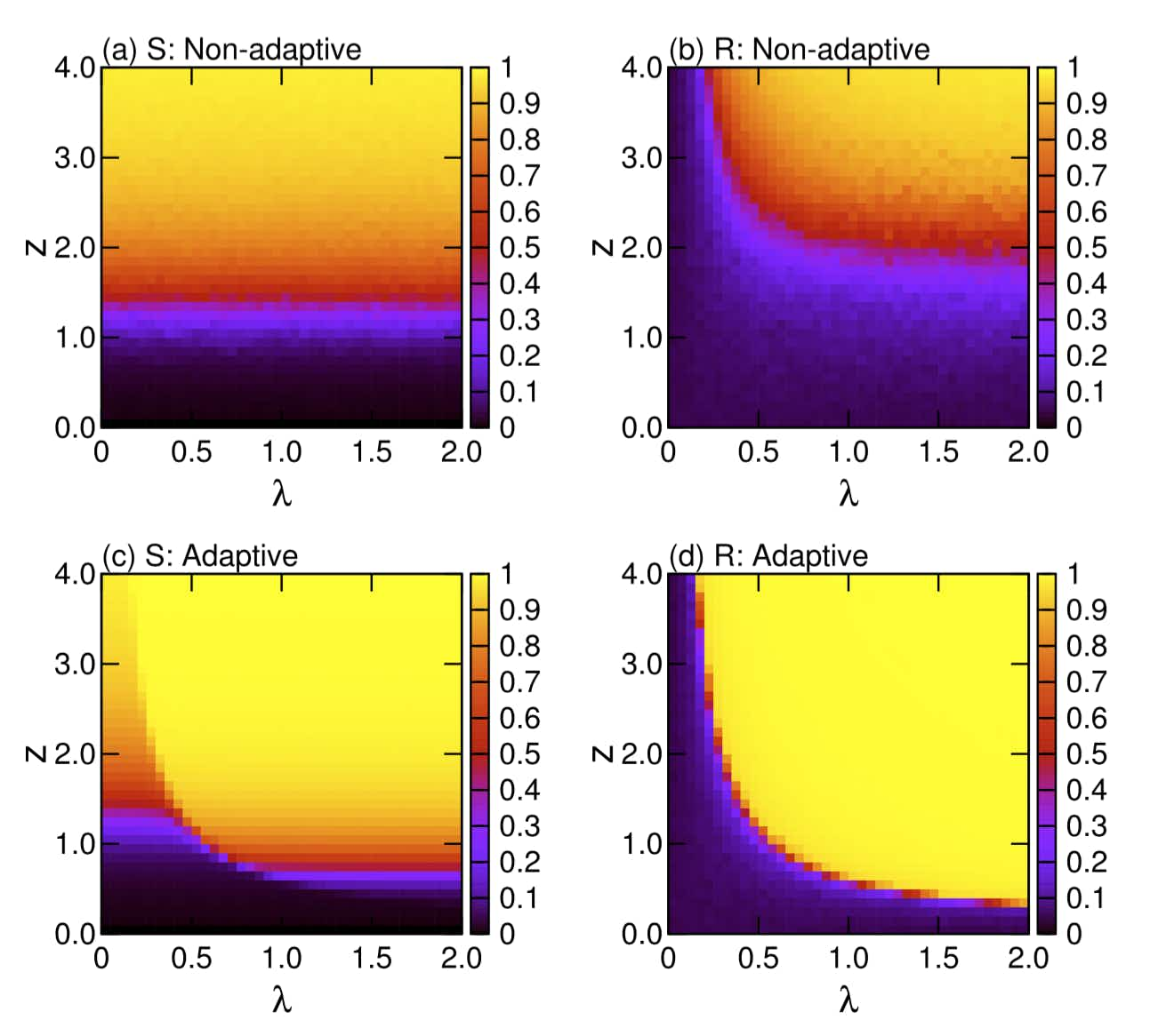 Concurrent enhancement of percolation and synchronization in adaptive networks